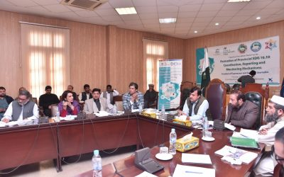 Capacity Development of Working Group on SDG 16.10.1 Reporting, Coordination and Monitoring Mechanisms (Khyber Pakhtunkhwa)